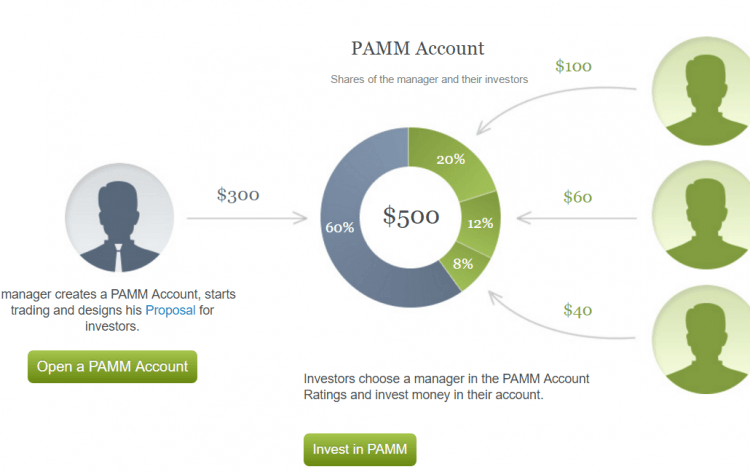 Best forex pamm brokers